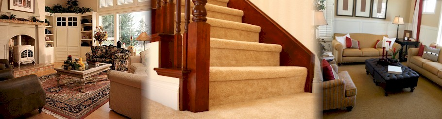 Tom's Carpet Cleaning Services, LLC